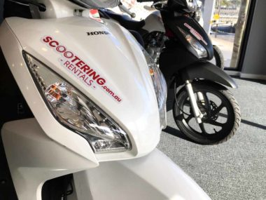 Honda NSC110 Dio scooter for rent or hire in Sydney from Scootering in Leichardt with large headlights
